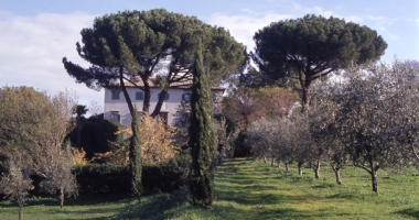 Villa Pianicara in Viterbo Roman Countryside
